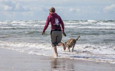 Aus dem Leben mit Hund: Wir Hundemenschen